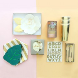 Bridal Shower Kit
