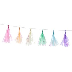Multicolored Tassel Garland